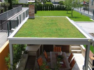 zazelenitev ravne strehe