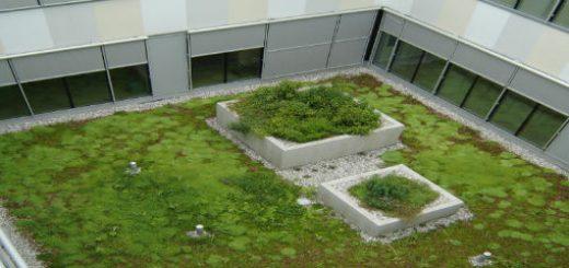 zelene strehe sestava