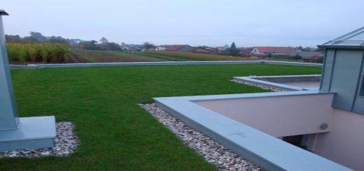 izvedba zelene strehe
