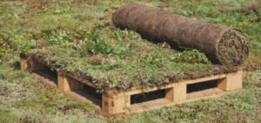 sestava zelene strehe