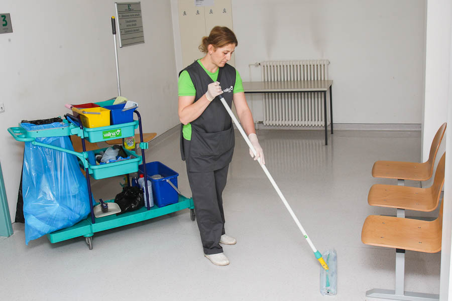 Čiščenje na domu