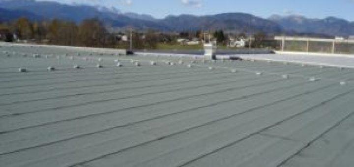 Ravne strehe Šircelj