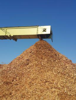 Lesna biomasa