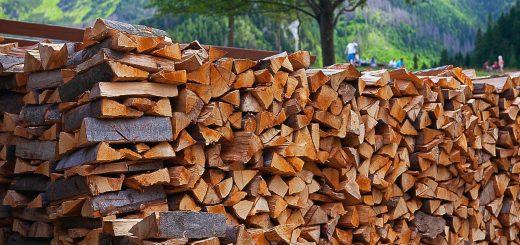 Že pripravljena drva