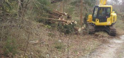 Spravljanje lesa