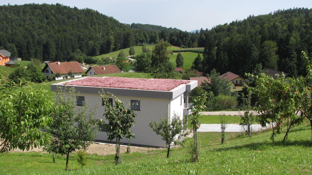 Zasaditev zelene strehe